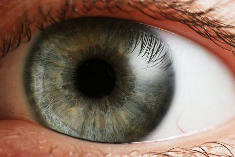 1024px-eye_iris